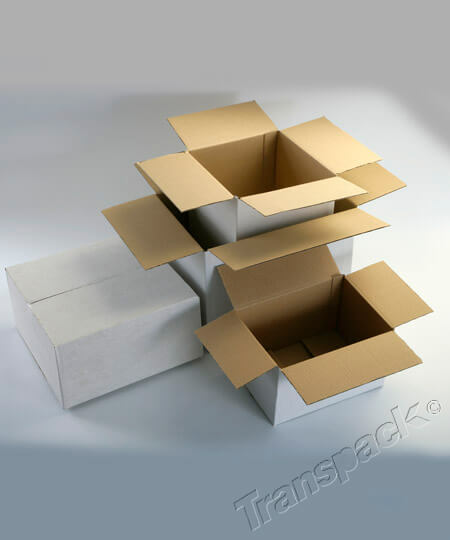 White Single and Double Wall Cartons