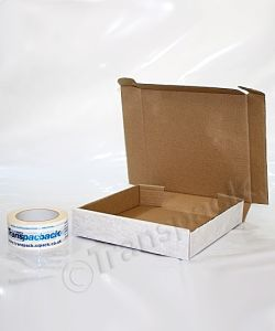 Self-locking Carton 245 x 228 x 47mm